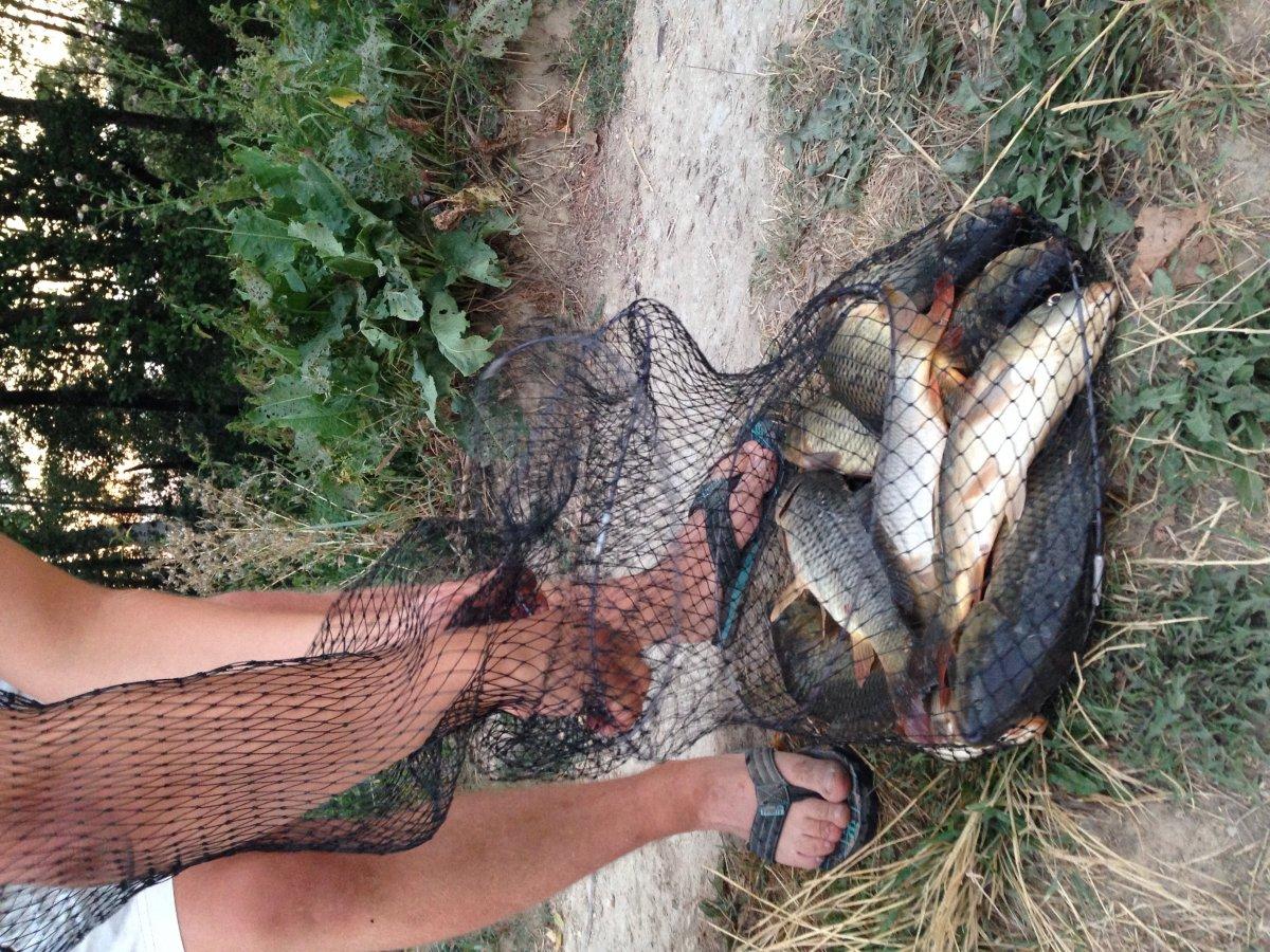 где клюет рыба в тульской области сейчас