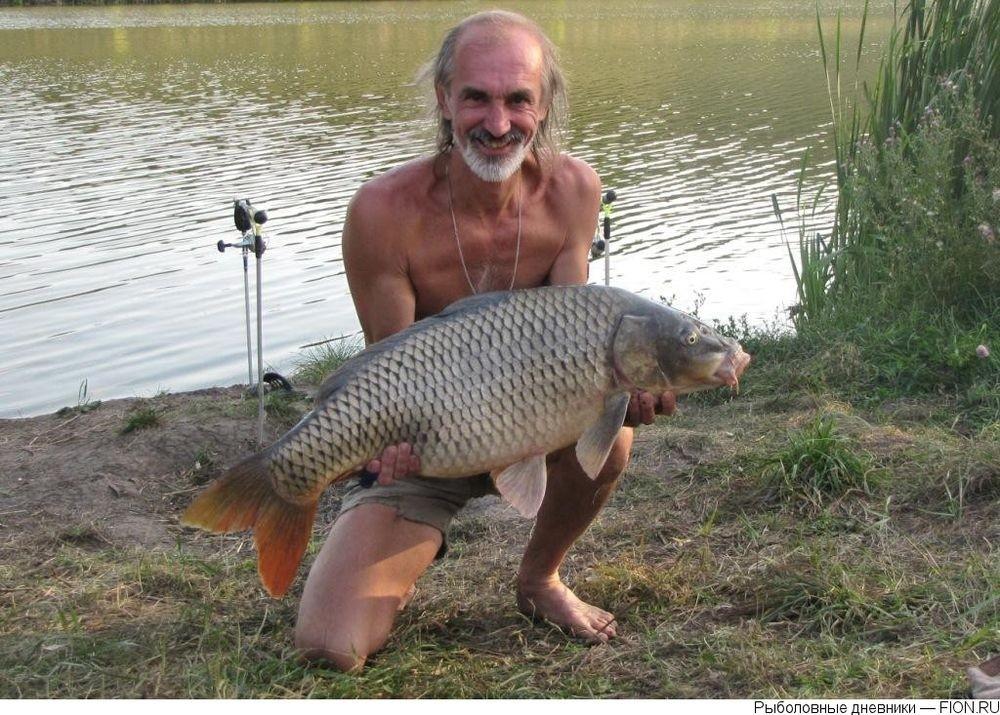 рыбалка на карпа в белгородской обл