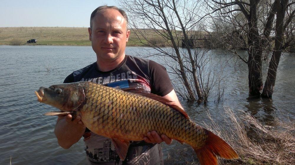лучшие водоемы для рыбалки в тульской области